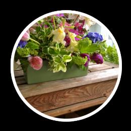 Espuma-floral